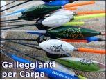 Carp Fishing Floats